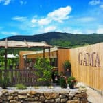 GAMA Weinservice